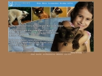 View More Information on Cats Whiskers Cattery The