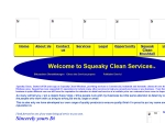 View More Information on Squeaky Clean Windows