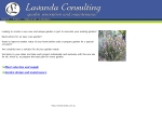 View More Information on Lavanda Consulting