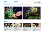 View More Information on Townsville Flower Market