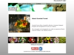 View More Information on Scented Forest Florist
