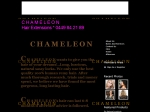 View More Information on Chameleon Hair Extensions