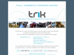 View More Information on Trik Vehicle Electronics