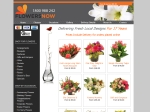 View More Information on Flowers Now