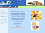 View More Information on Hawaiian Shave Ice