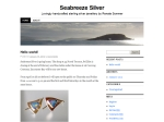 View More Information on Seabreeze Silver
