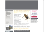 View More Information on Just Termites
