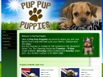 View More Information on Pup Pup Puppies