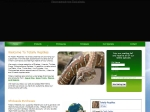View More Information on Totally Reptiles