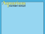 View More Information on Aquarium Factory Outlet