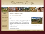 View More Information on Peppermint Springs