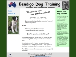 View More Information on Bendigo Dog Training