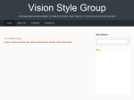 View More Information on Vision Style Group