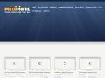 View More Information on Promote Your Website Online
