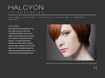 View More Information on Halcyon