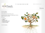 View More Information on Peach Business Management