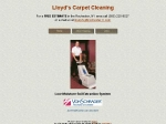 View More Information on Lloyds Carpet Steam Cleaning