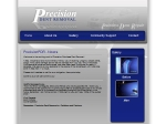 View More Information on Precision Dent Removal