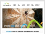 View More Information on City Summit Indoor Rock Climbing Centre