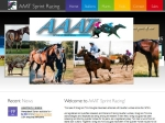 View More Information on Aaat Racing Stud