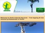 View More Information on Perth Arbor Services