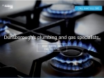 View More Information on Southwest Plumbing And Gas