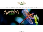View More Information on The Serendipity Gallery
