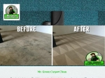 View More Information on Mr Green Carpet Clean