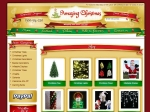 View More Information on Amazing Christmas