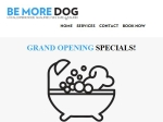 View More Information on Be More Dog