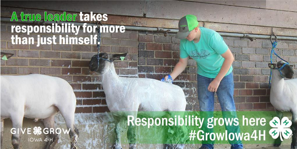 Grow Responsibility