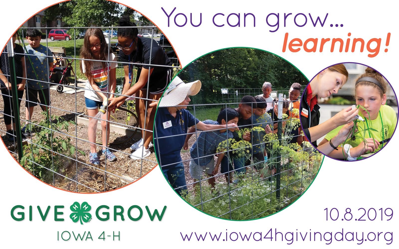 You Can Grow 2