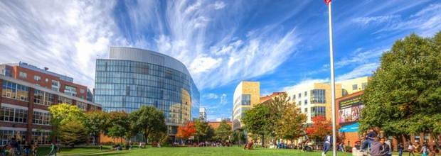 Northeastern University Admitted Early Action Student Chat