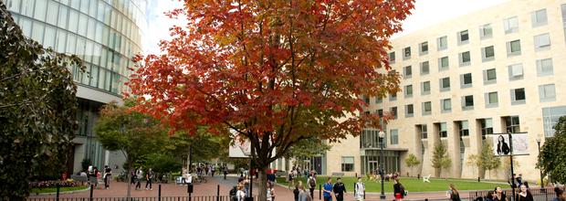 Northeastern University Bouve Prospective Student Webinar