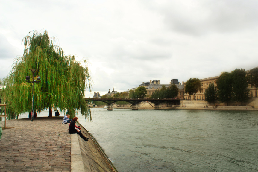 The best place in Paris is a tree