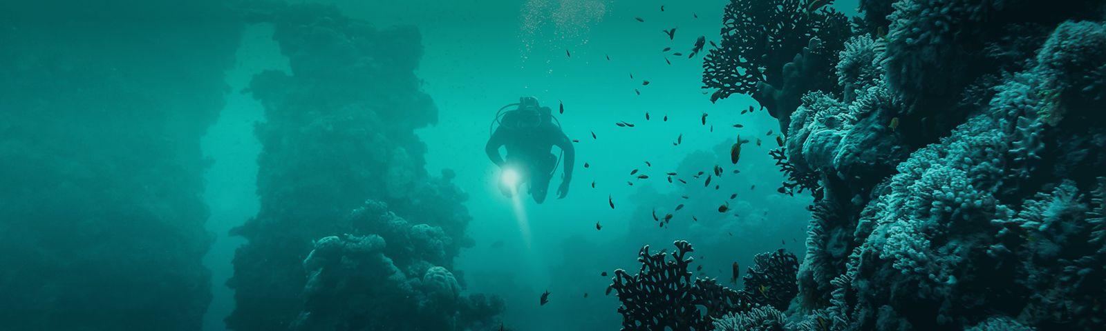 Winners announced for Ocean Changemakers Challenge