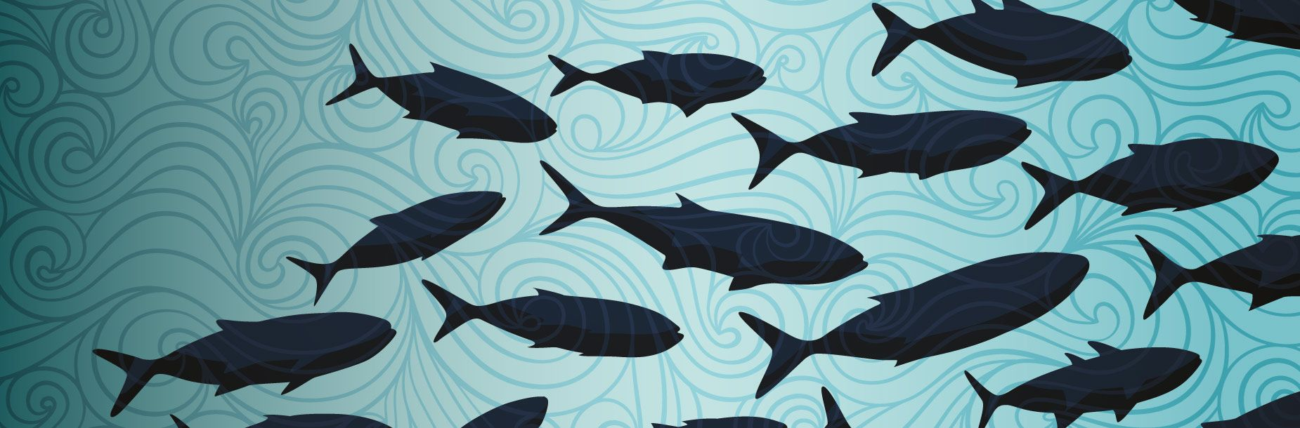 Economist Intelligence Unit reveals leaders and laggards on coastal governance
