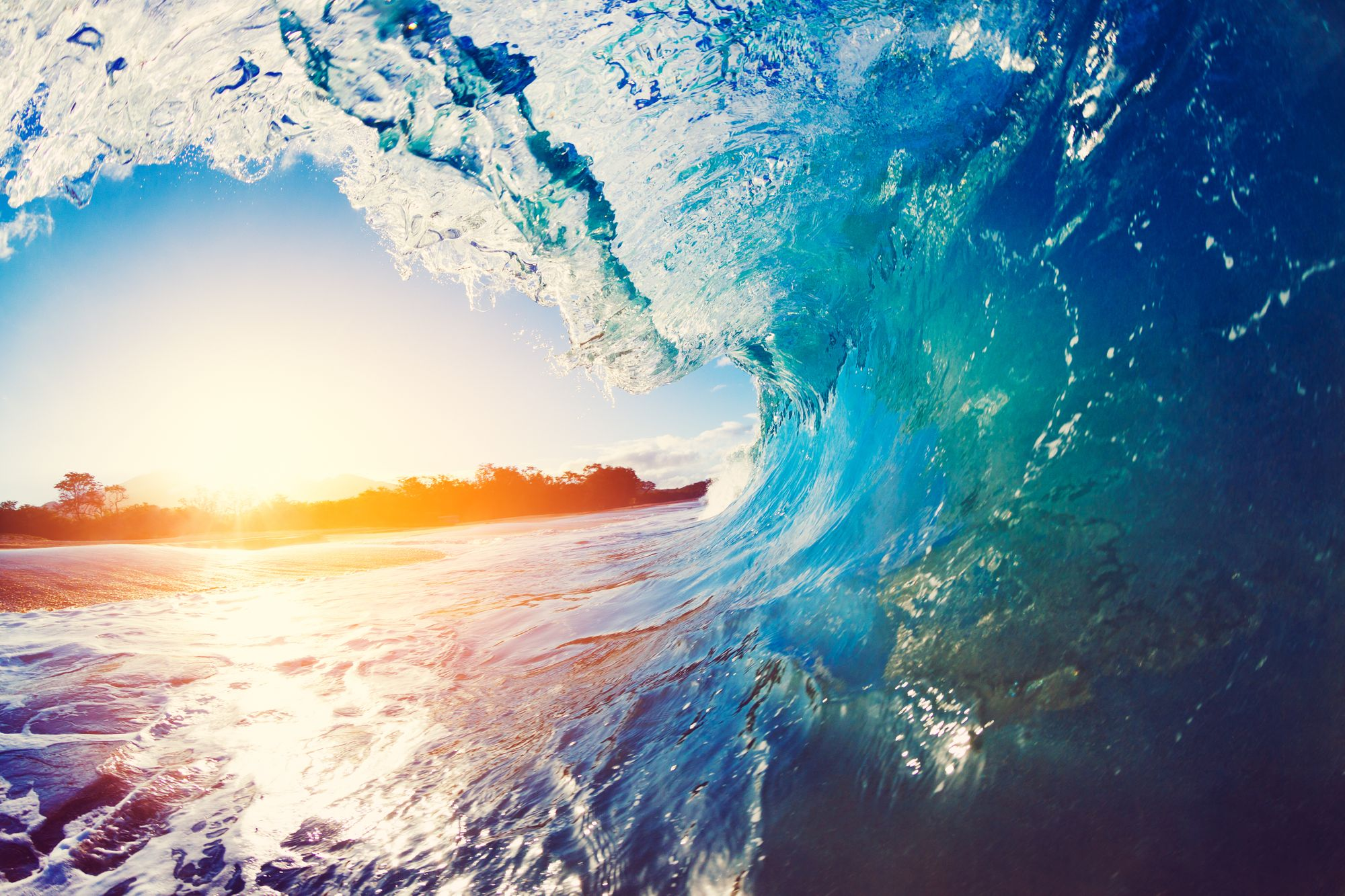 Life and livelihoods: UN to host virtual World Ocean Day