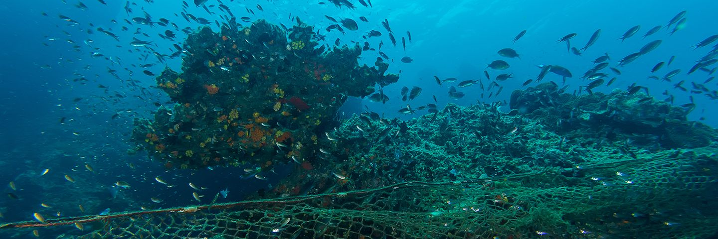 How the seafood industry could chart the course between challenge and opportunity