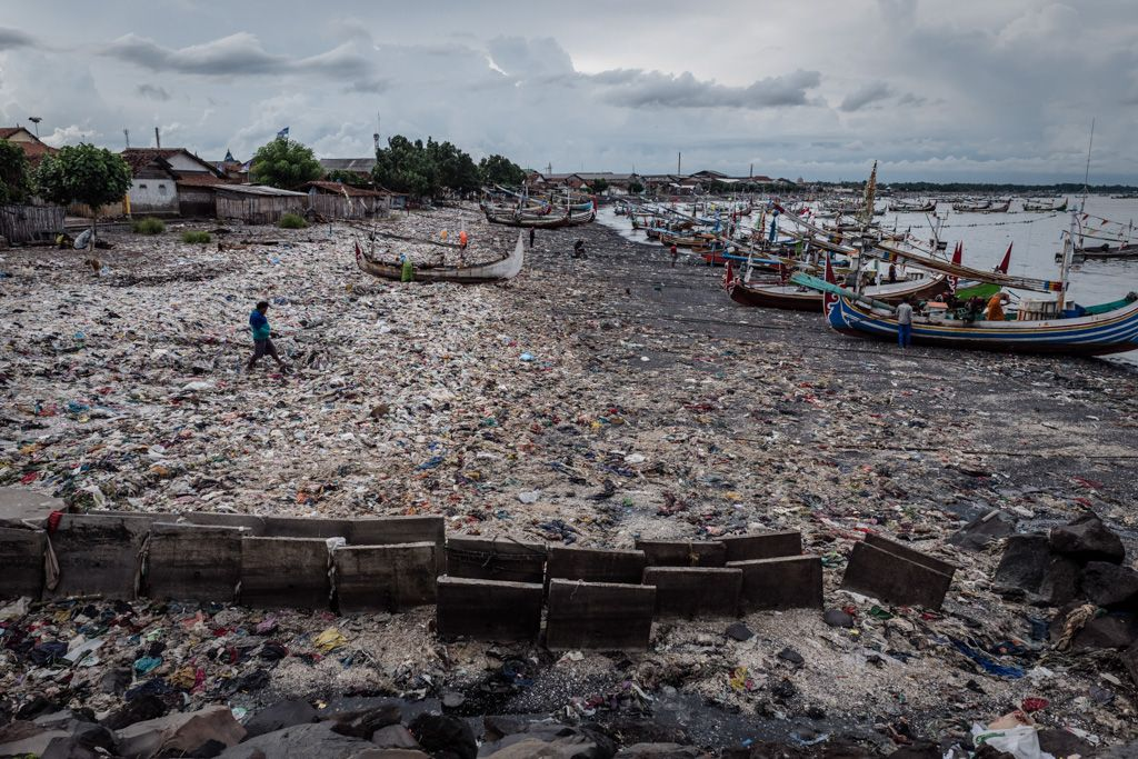 Decisive market action: Healthy oceans, healthy investments