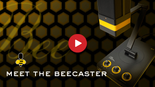 Meet The Beecaster