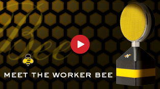 Meet The Worker Bee