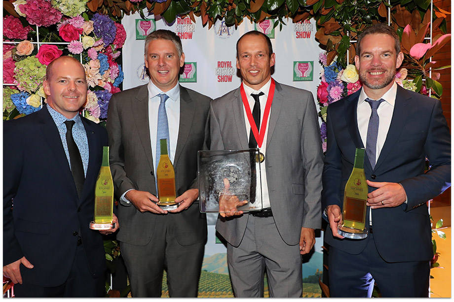 The Giesen Group Winemakers Winning Awards 2019