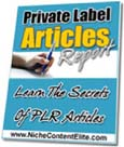 Learn The Secrets Of PLR Articles