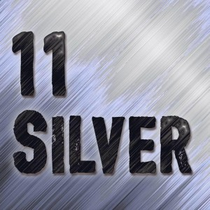 11 Silver - Rock Band in Muskegon, Michigan