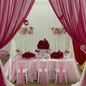 2 Friends & A Party - Princess Party / Party Decor in Dallas, Texas