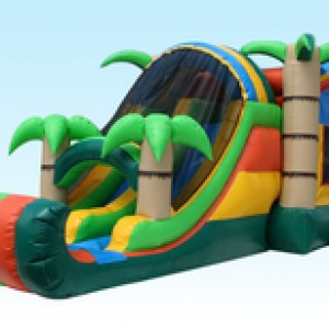 4-Kid-Inflatables LLC - Party Inflatables / Party Rentals in Fayetteville, North Carolina