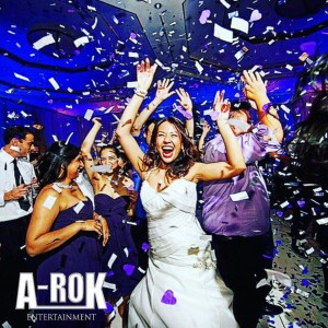 A-rok Entertainment - Wedding DJ in Newport Beach, California