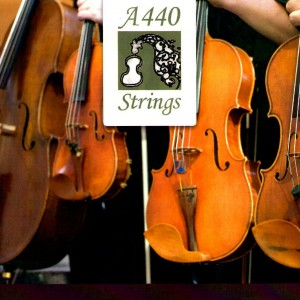 A440 Strings - String Quartet / String Trio in Fort Wayne, Indiana