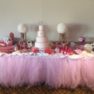 A Fanci Touch Events - Event Planner / Party Decor in Greensboro, North Carolina